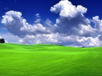 стрижка газонов