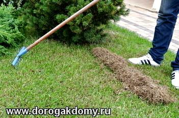 вычесывание газона скарификация